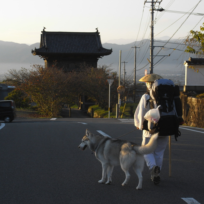 Memory of the second pilgrimage 1200km with husky HANA_c0049299_13442029.jpg