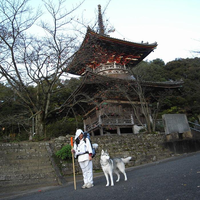 Memory of the second pilgrimage 1200km with husky HANA_c0049299_1344215.jpg