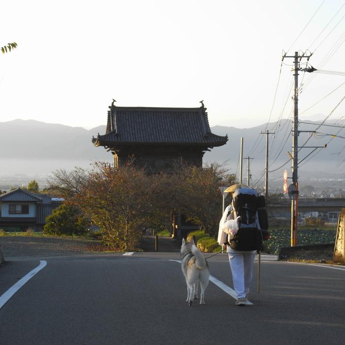 Memory of the second pilgrimage 1200km with husky HANA_c0049299_1344304.jpg