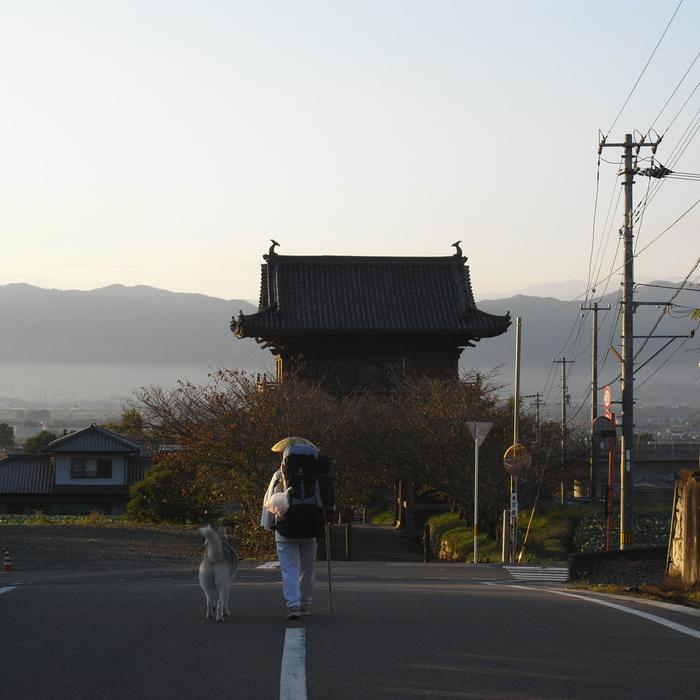 Memory of the second pilgrimage 1200km with husky HANA_c0049299_13445789.jpg