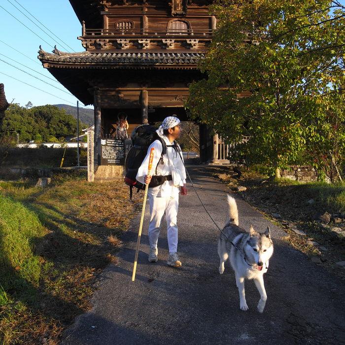 Memory of the second pilgrimage 1200km with husky HANA_c0049299_13552149.jpg