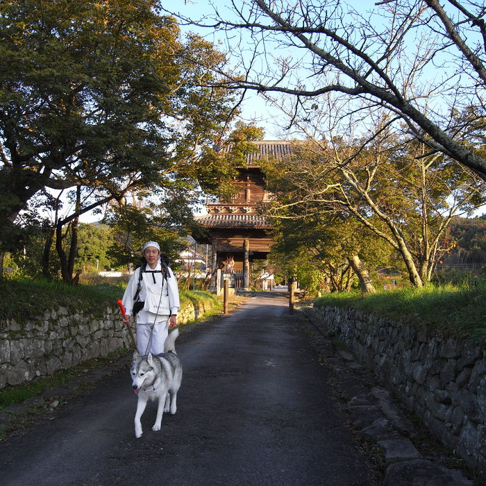 Memory of the second pilgrimage 1200km with husky HANA_c0049299_13554541.jpg
