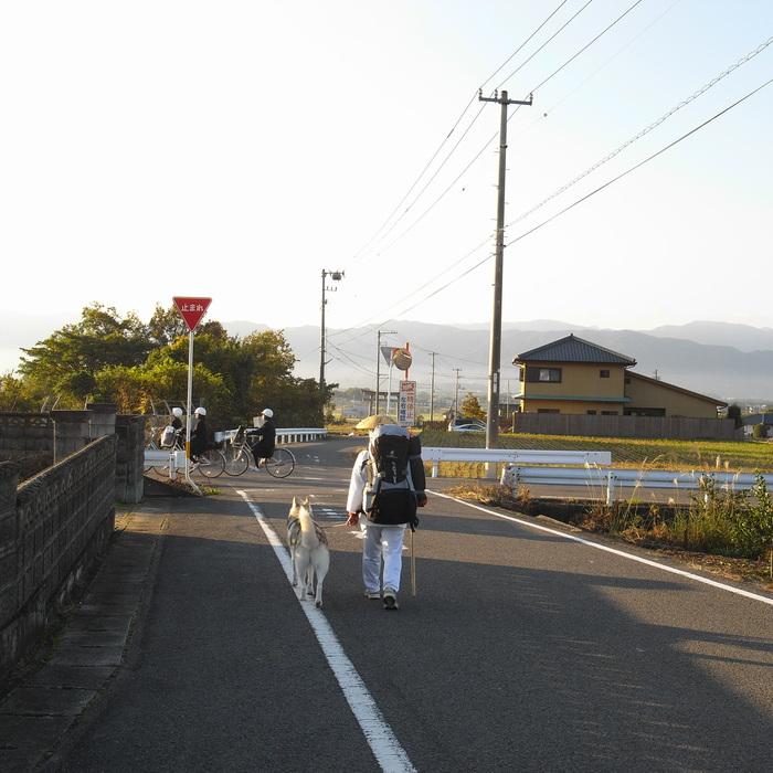 Memory of the second pilgrimage 1200km with husky HANA_c0049299_13555841.jpg