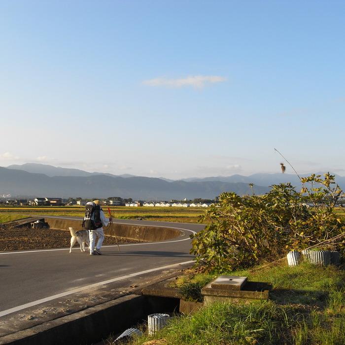 Memory of the second pilgrimage 1200km with husky HANA_c0049299_13564935.jpg