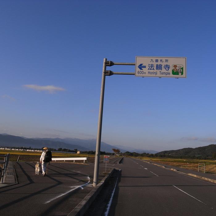 Memory of the second pilgrimage 1200km with husky HANA_c0049299_13574510.jpg