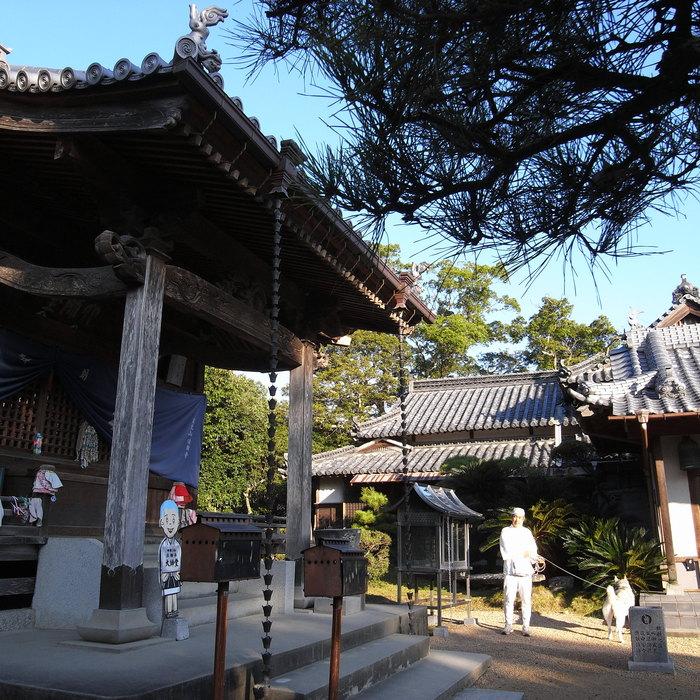 Memory of the second pilgrimage 1200km with husky HANA_c0049299_13592895.jpg