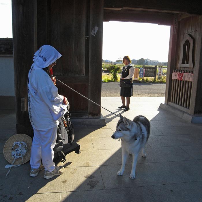 Memory of the second pilgrimage 1200km with husky HANA_c0049299_1405958.jpg