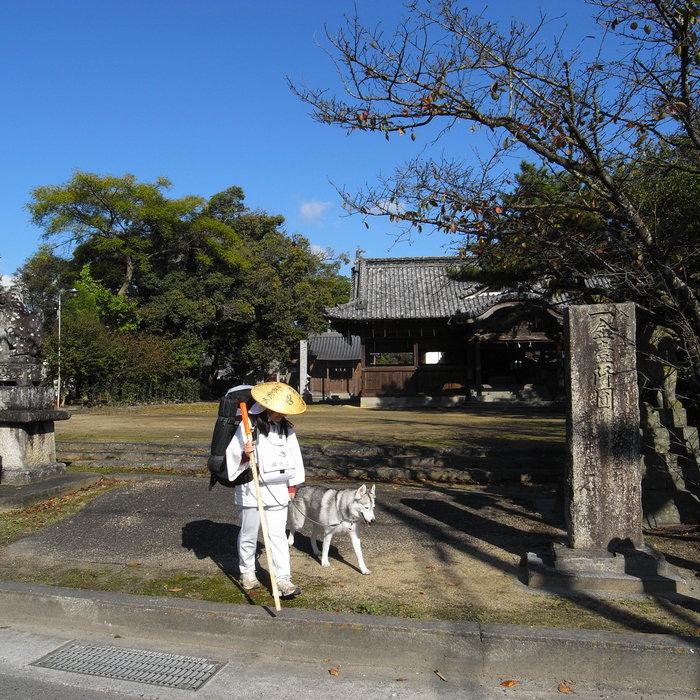 Memory of the second pilgrimage 1200km with husky HANA_c0049299_1530148.jpg
