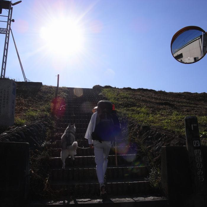 Memory of the second pilgrimage 1200km with husky HANA_c0049299_15303419.jpg
