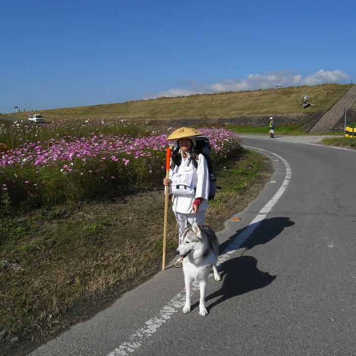 Memory of the second pilgrimage 1200km with husky HANA_c0049299_15315929.jpg