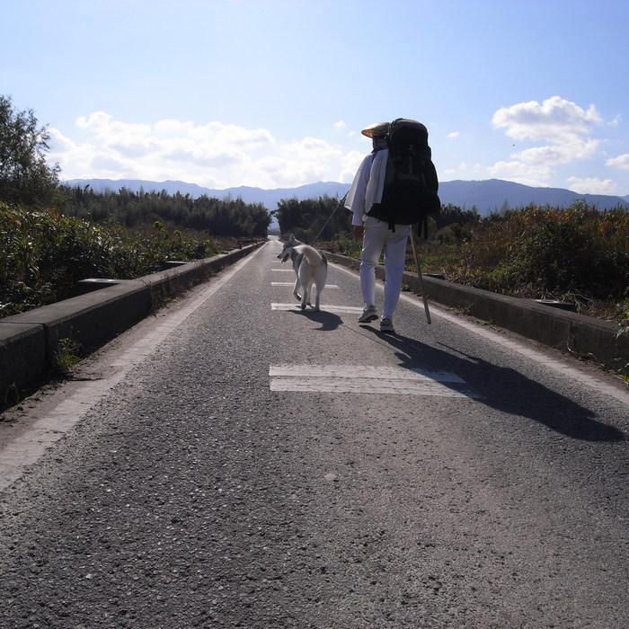 Memory of the second pilgrimage 1200km with husky HANA_c0049299_15325195.jpg