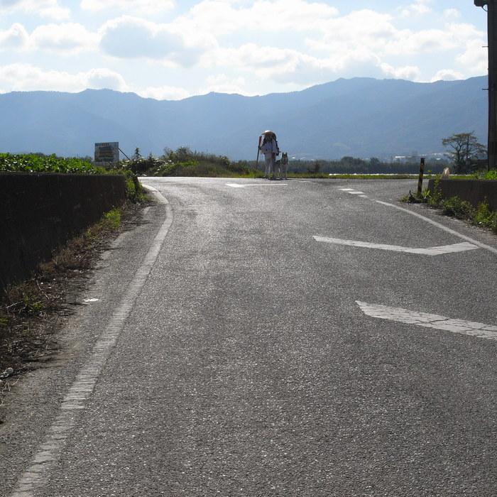 Memory of the second pilgrimage 1200km with husky HANA_c0049299_15333620.jpg