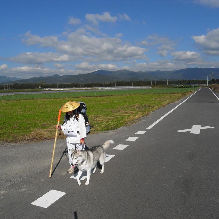 Memory of the second pilgrimage 1200km with husky HANA_c0049299_15334745.jpg
