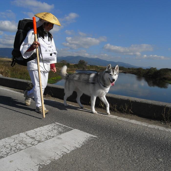 Memory of the second pilgrimage 1200km with husky HANA_c0049299_1533541.jpg