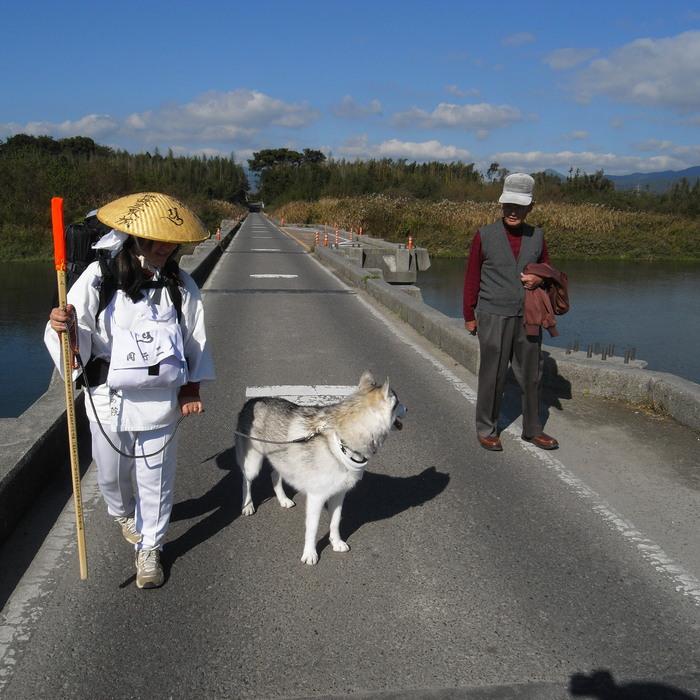 Memory of the second pilgrimage 1200km with husky HANA_c0049299_15382339.jpg