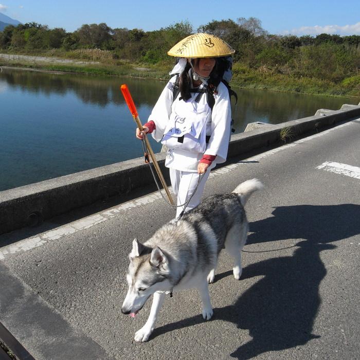 Memory of the second pilgrimage 1200km with husky HANA_c0049299_15383363.jpg