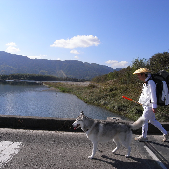 Memory of the second pilgrimage 1200km with husky HANA_c0049299_15395738.jpg