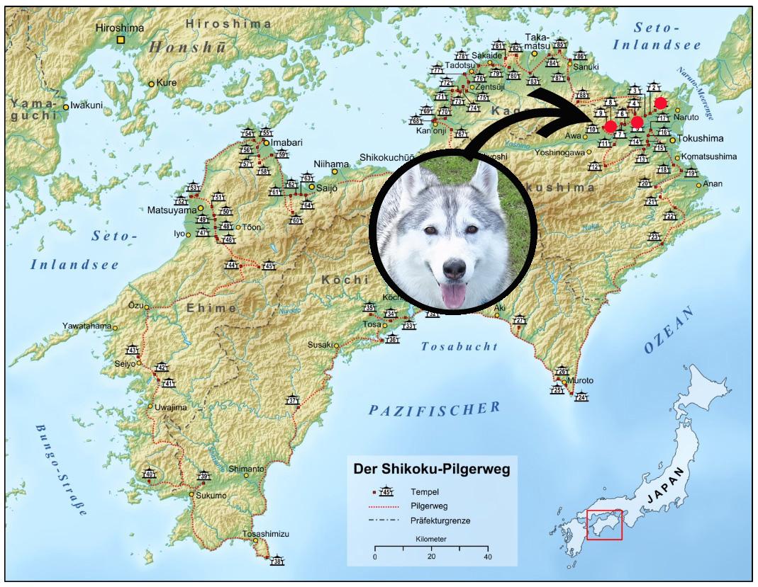 Memory of the second pilgrimage 1200km with husky HANA_c0049299_15444037.jpg