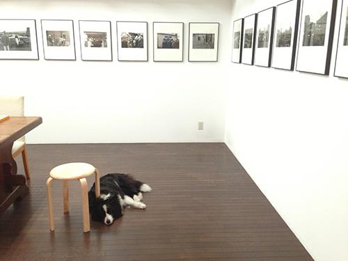 永嶋勝美写真展は本日終了致しました、起こし頂きました皆様ありがとうございました。_b0194208_22593591.jpg