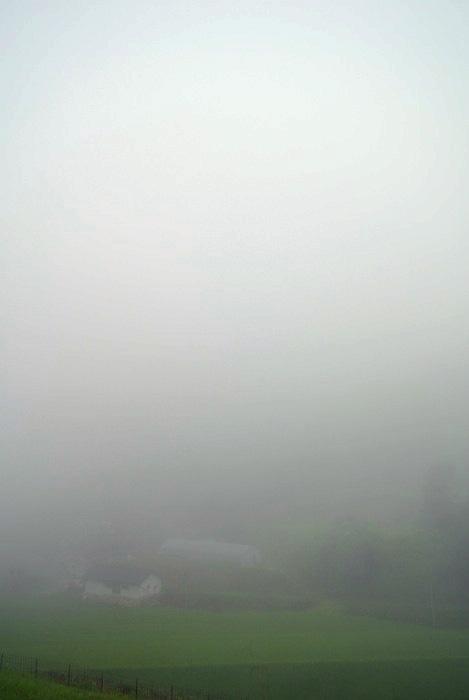 朝靄の中_d0231263_22335134.jpg