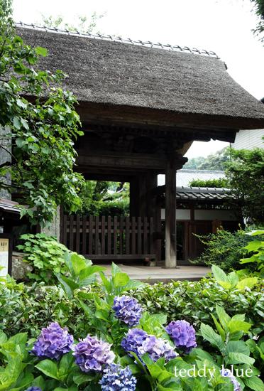 Kamakura Pilgrimage  鎌倉三十三観音巡り 二日目_e0253364_9474655.jpg
