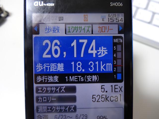 a0248232_816580.jpg