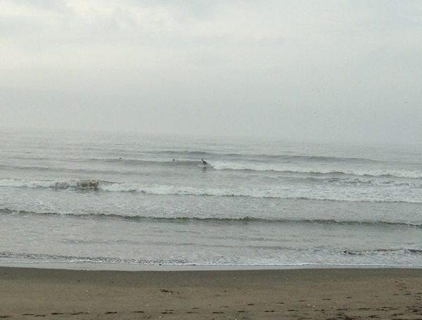 surf&work_c0019551_20464356.jpg