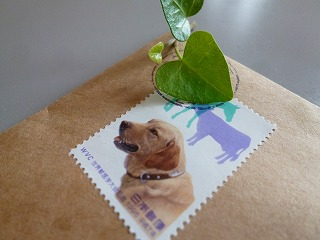 thank you     ラブラドールの切手♪_a0165160_7461357.jpg
