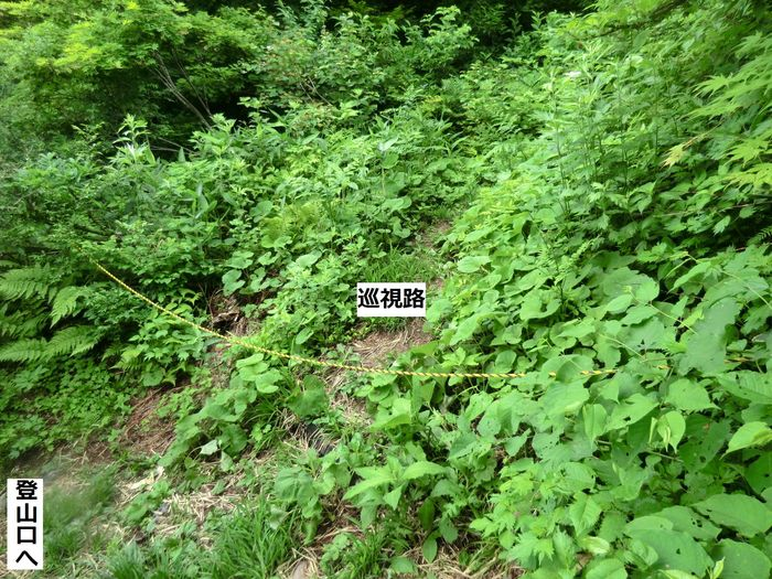 b0185573_142384.jpg