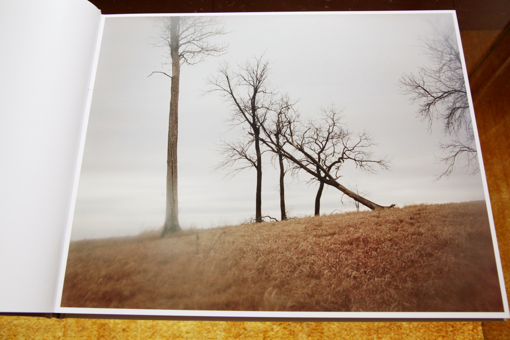 Todd Hido 「Excerpts from Silver Meadows」_c0016177_1465285.jpg