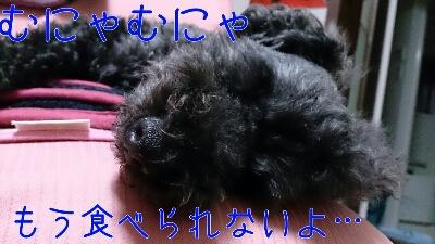 b0236618_10402876.jpg