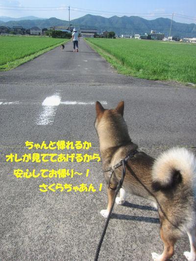 f0143123_2116508.jpg