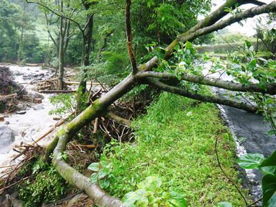7.12北部九州大水害からまもなく1年・・・_a0254656_16353667.jpg