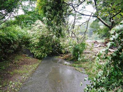 7.12北部九州大水害からまもなく1年・・・_a0254656_16395846.jpg