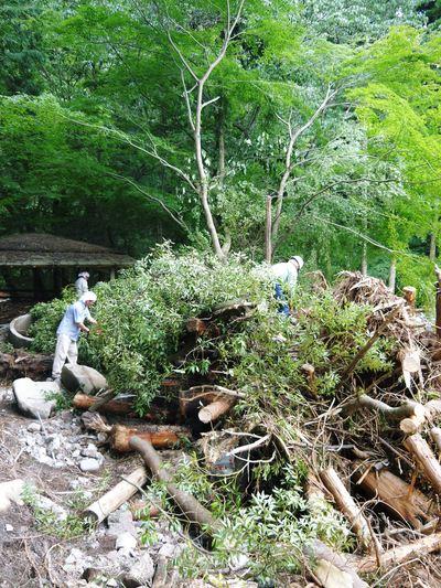 7.12北部九州大水害からまもなく1年・・・_a0254656_16553825.jpg