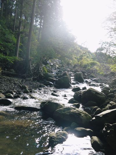 7.12北部九州大水害からまもなく1年・・・_a0254656_17434826.jpg