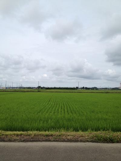 配筋検査〜潮来市Iさま邸_a0117794_18334773.jpg