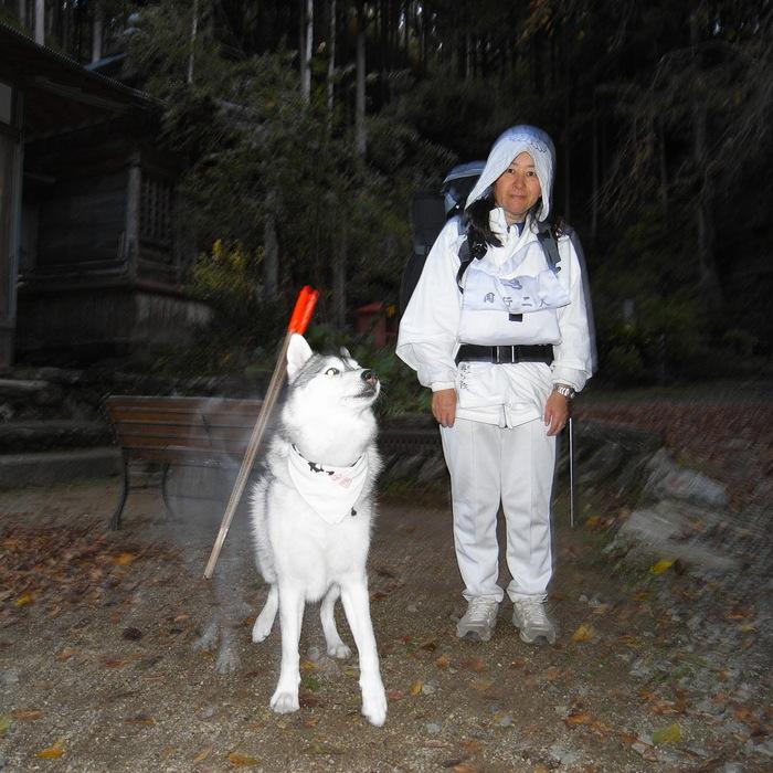 Memory of the second pilgrimage 1200km with husky HANA_c0049299_16484815.jpg