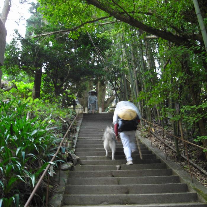 Memory of the second pilgrimage 1200km with husky HANA_c0049299_16503279.jpg