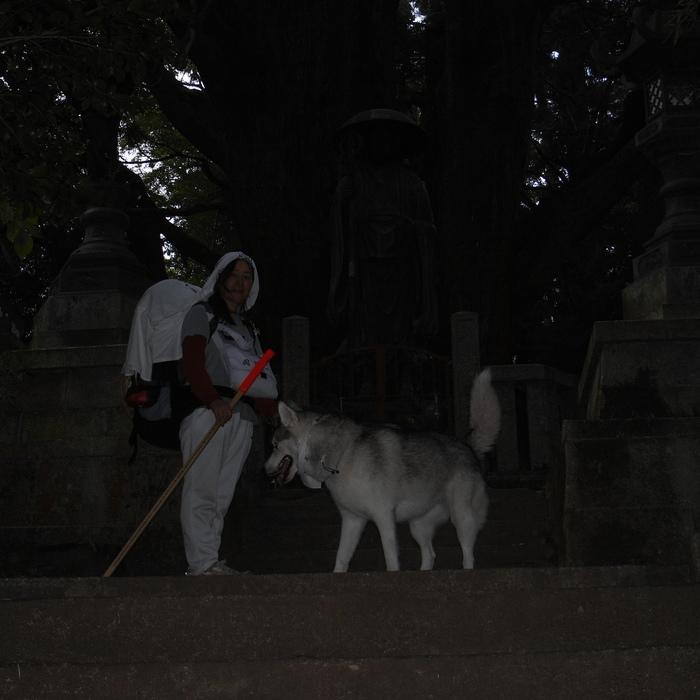 Memory of the second pilgrimage 1200km with husky HANA_c0049299_16511997.jpg