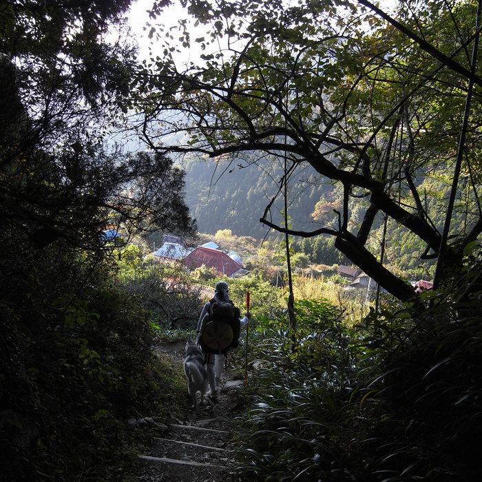 Memory of the second pilgrimage 1200km with husky HANA_c0049299_16561059.jpg