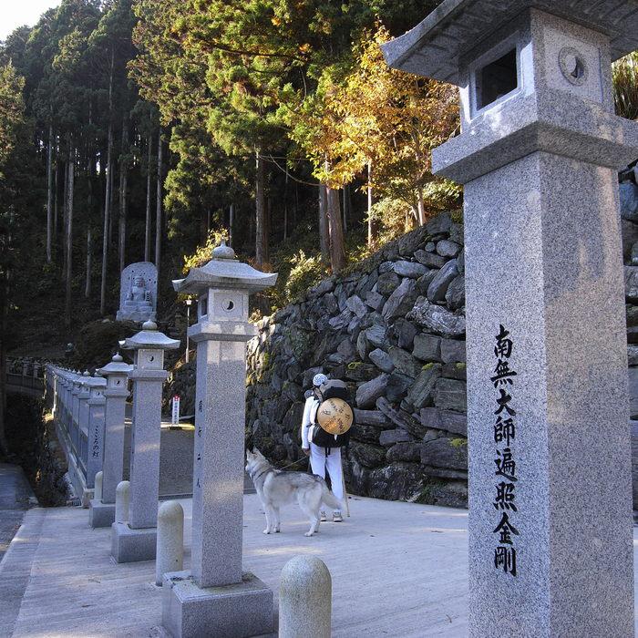 Memory of the second pilgrimage 1200km with husky HANA_c0049299_1659722.jpg