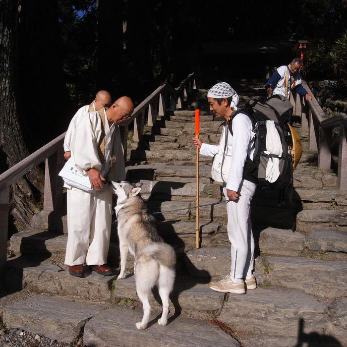 Memory of the second pilgrimage 1200km with husky HANA_c0049299_1703963.jpg