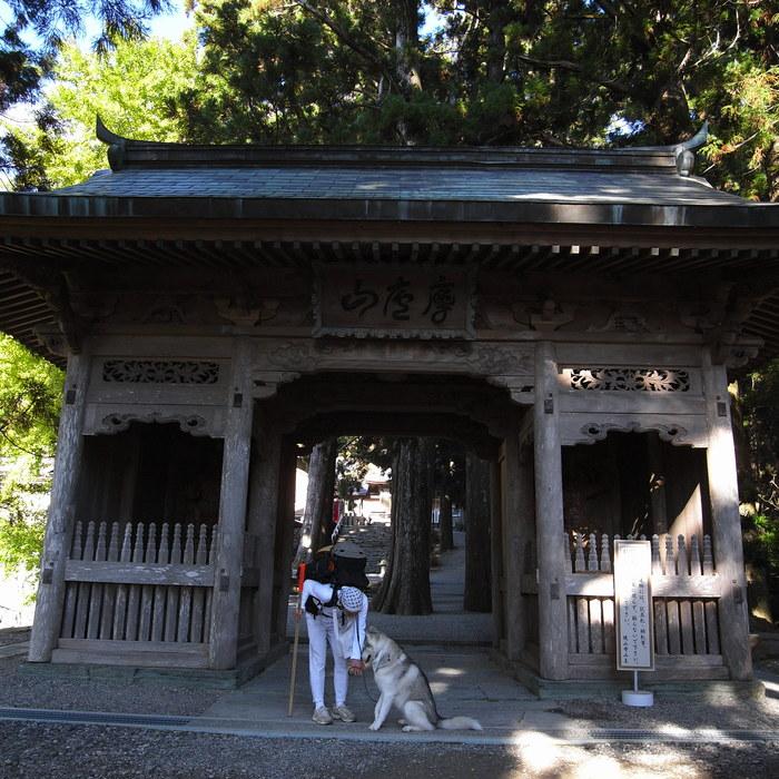 Memory of the second pilgrimage 1200km with husky HANA_c0049299_1711545.jpg