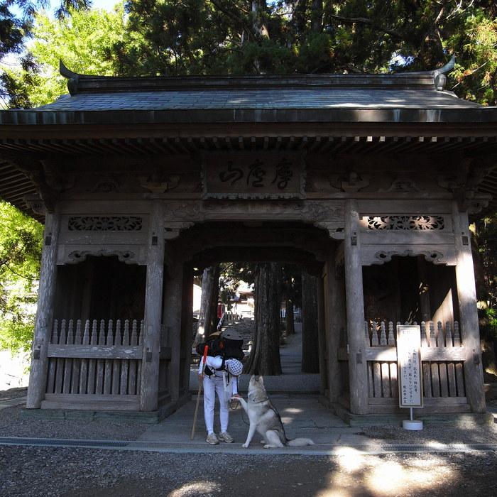Memory of the second pilgrimage 1200km with husky HANA_c0049299_1713729.jpg