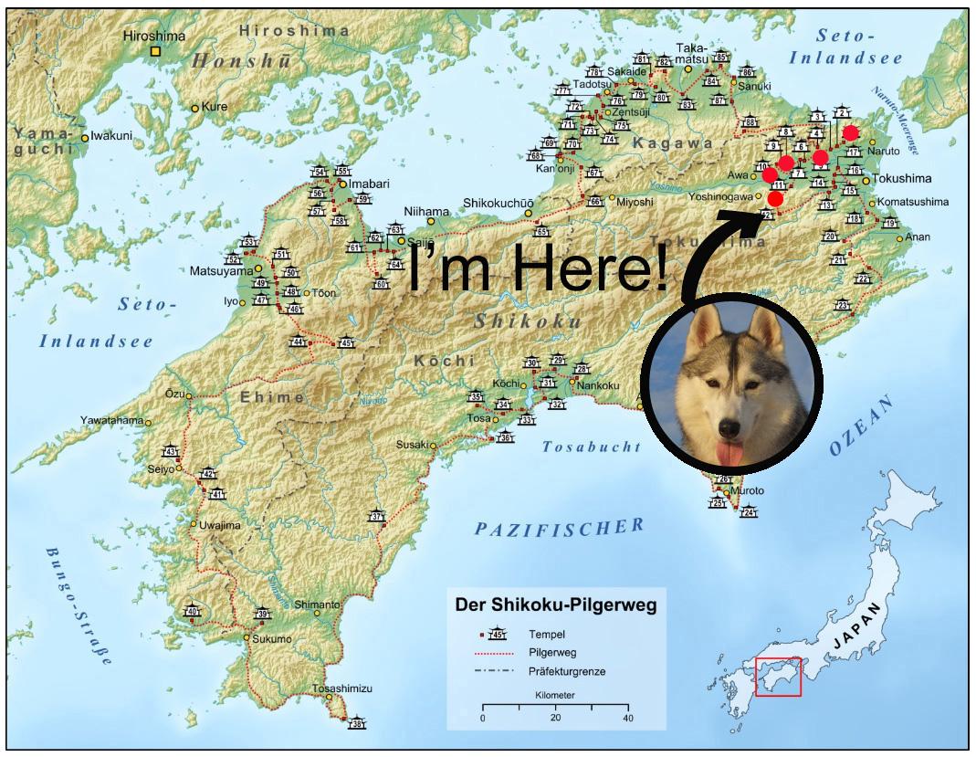 Memory of the second pilgrimage 1200km with husky HANA_c0049299_17321549.jpg