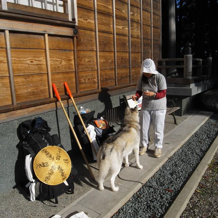 Memory of the second pilgrimage 1200km with husky HANA_c0049299_1754331.jpg