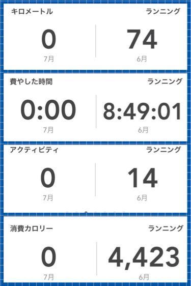 2013年6月のシフォン and…_b0203925_847328.jpg