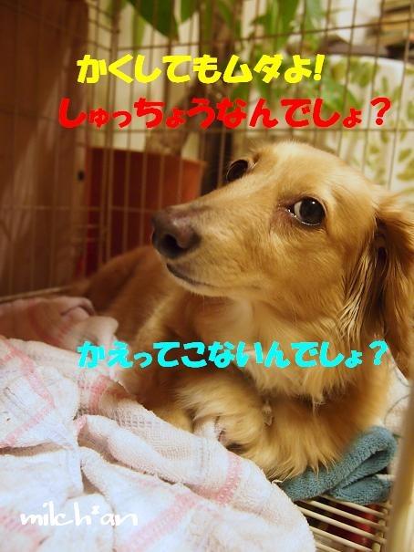 b0115642_22541034.jpg