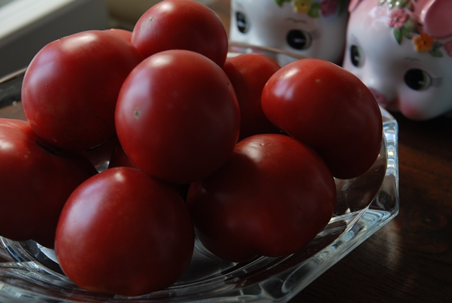 トマトの日_c0147770_13552540.jpg
